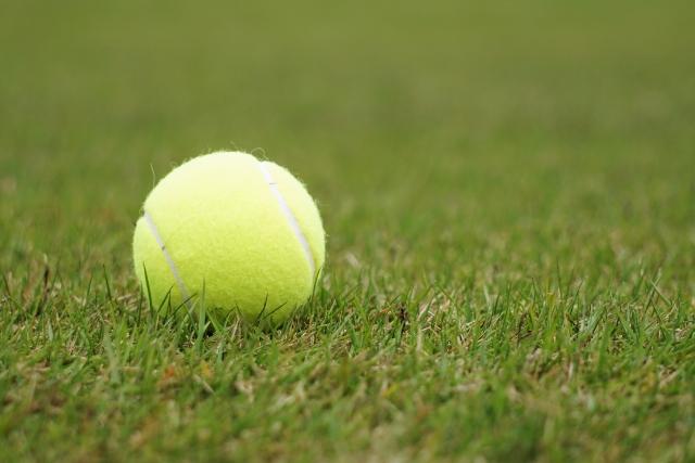 記事 王者敗れる・・・ ~テニス大好き整体師の悲しい出来事~のアイキャッチ画像